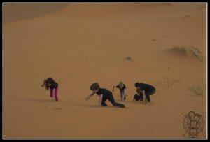 subiendo las dunas de Erg Chebbi, sólo apto para valientes y pequeños aventureros