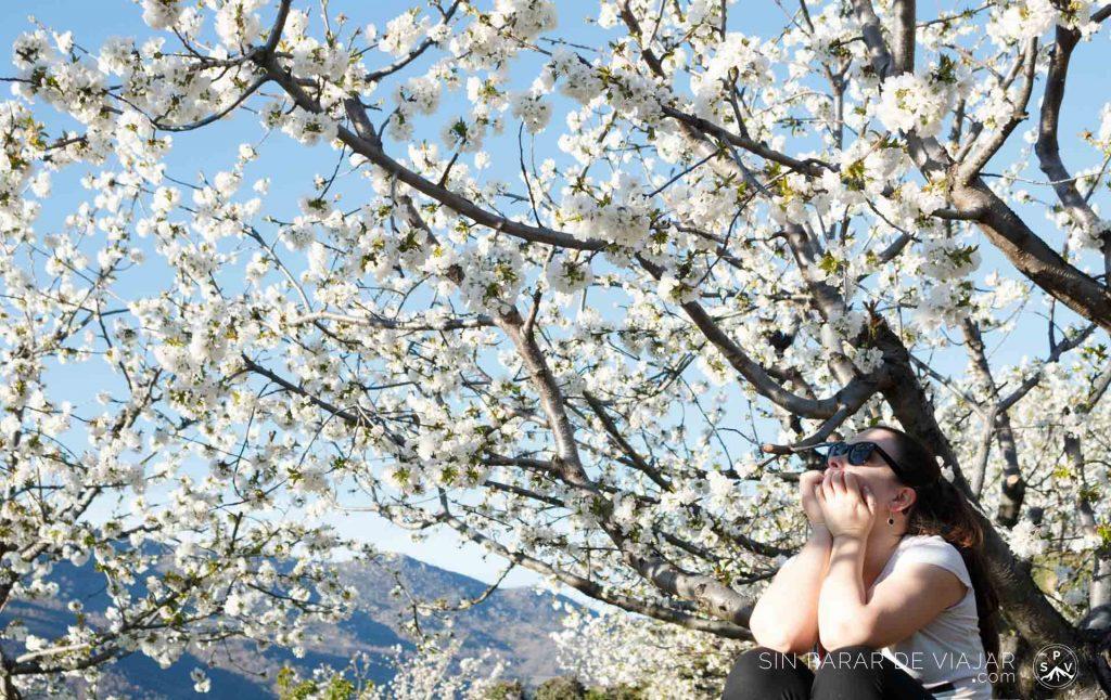 16 destinos en furgoneta para disfrutar esta primavera