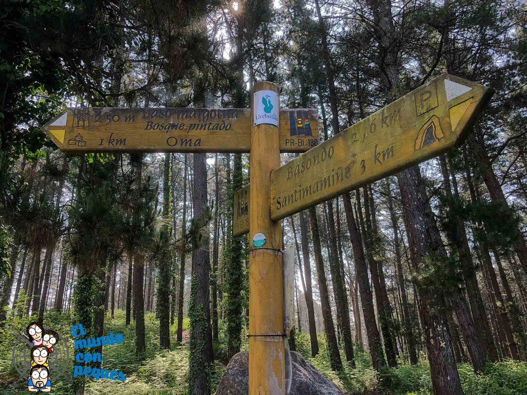 Desvío hacia el bosque de Oma